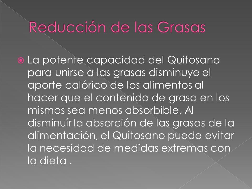 La potente capacidad del Quitosano para unirse a las grasas disminuye el aporte calórico de los alimentos al hacer que el contenido de grasa en los mi