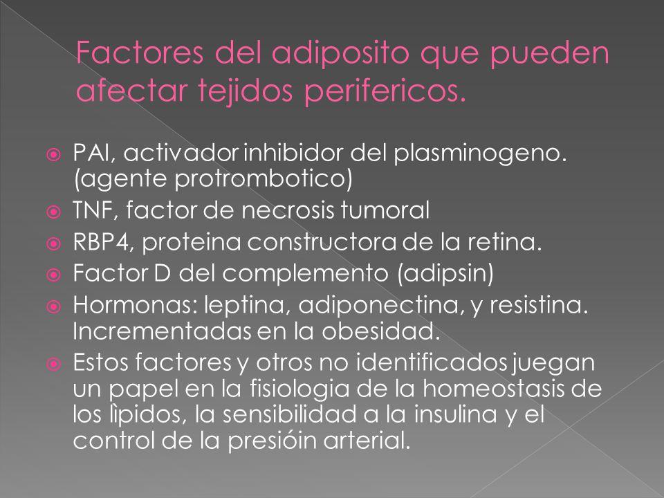 EXAMENES CLINICOS ALIMENTACION ANTIOBESIDAD SUPLEMENTACION ANTIINFLAMATORIA EJERCICIO PERSONALIZADO CONTROL DEL ESTRÉS