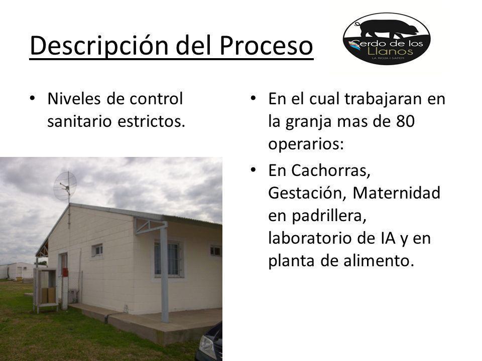 Descripción del Proceso Niveles de control sanitario estrictos.