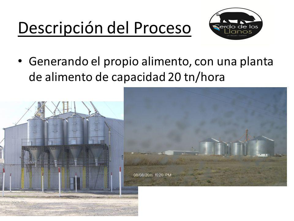 Descripción del Proceso Generando el propio alimento, con una planta de alimento de capacidad 20 tn/hora