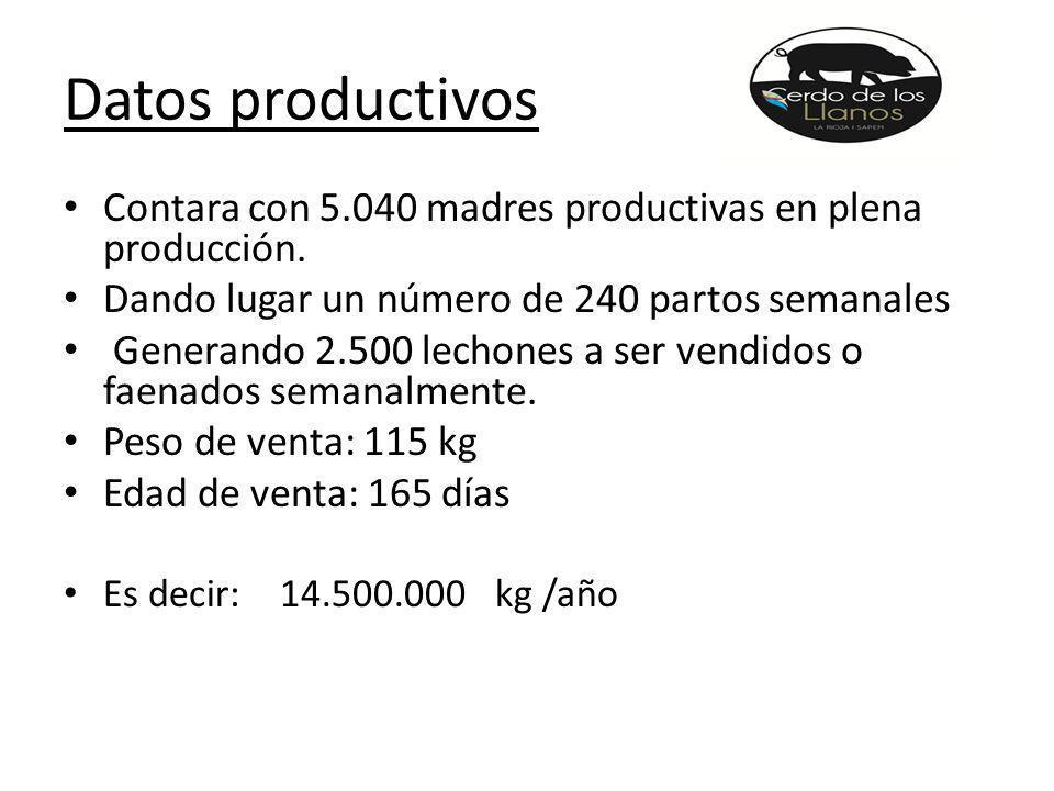 Datos productivos Contara con 5.040 madres productivas en plena producción.