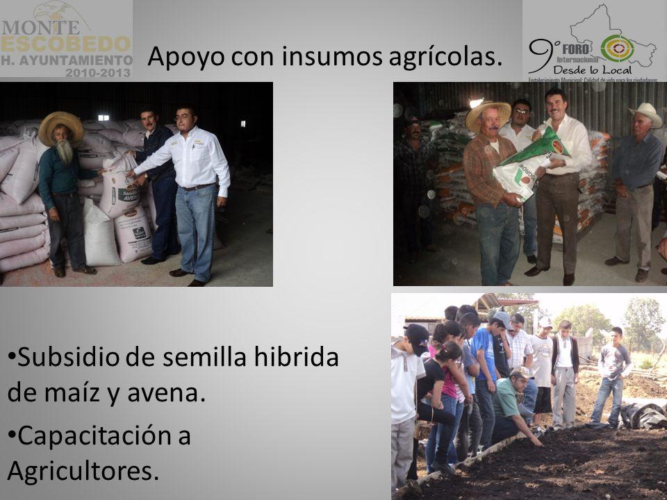 Subsidio de semilla hibrida de maíz y avena.Capacitación a Agricultores.