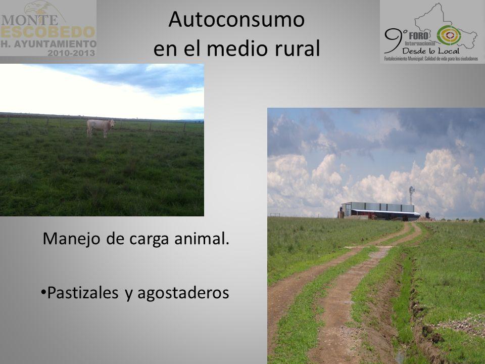 Manejo de carga animal. Pastizales y agostaderos Autoconsumo en el medio rural