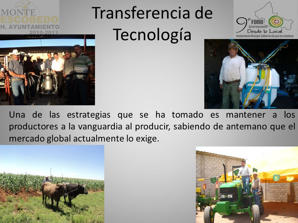 Transferencia de Tecnología Una de las estrategias que se ha tomado es mantener a los productores a la vanguardia al producir, sabiendo de antemano que el mercado global actualmente lo exige.