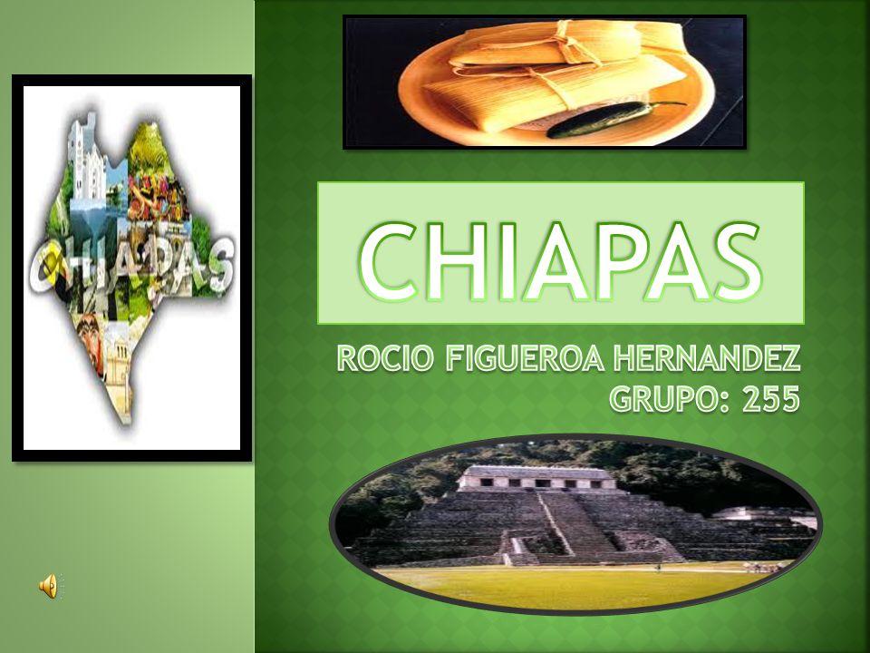 De la gastronomía de Chiapas hay que resaltar su sabor, variedad y la calidad de sus productos.