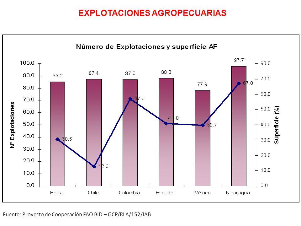 Fuente: Proyecto de Cooperación FAO BID – GCP/RLA/152/IAB EXPLOTACIONES AGROPECUARIAS