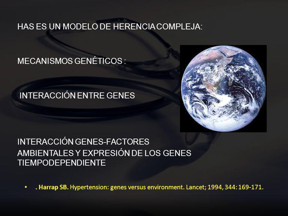 HAS ES UN MODELO DE HERENCIA COMPLEJA: MECANISMOS GENÉTICOS : INTERACCIÓN ENTRE GENES INTERACCIÓN GENES-FACTORES AMBIENTALES Y EXPRESIÓN DE LOS GENES