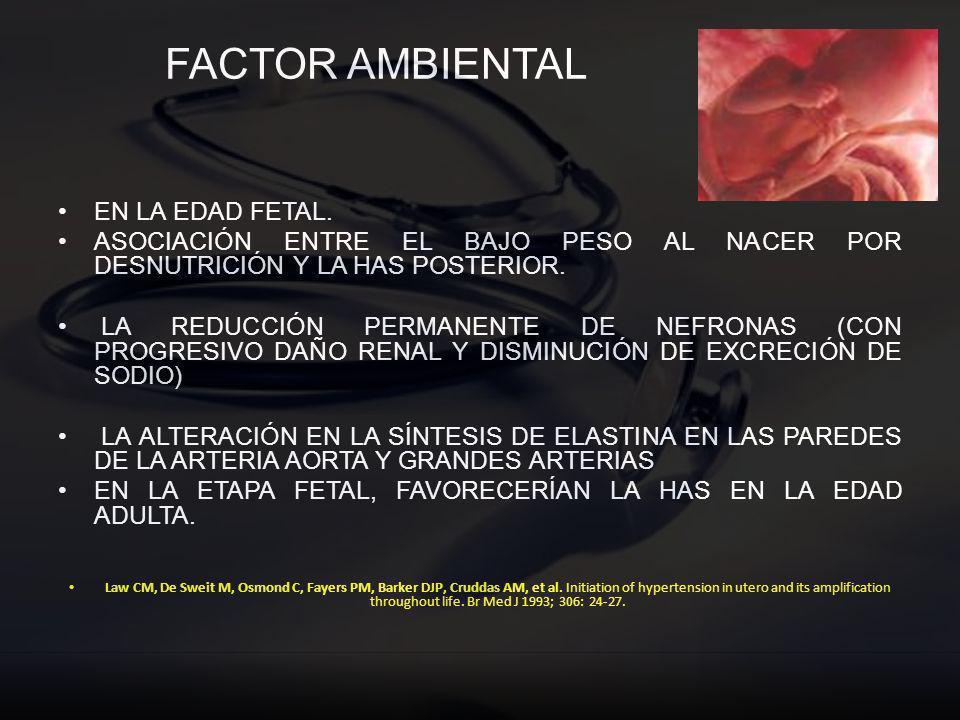 FACTOR AMBIENTAL EN LA EDAD FETAL. ASOCIACIÓN ENTRE EL BAJO PESO AL NACER POR DESNUTRICIÓN Y LA HAS POSTERIOR. LA REDUCCIÓN PERMANENTE DE NEFRONAS (CO