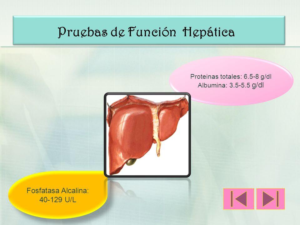 Pruebas de Función Hepática Proteinas totales: 6.5-8 g/dl Albumina: 3.5-5.5 g/dl Fosfatasa Alcalina: 40-129 U/L