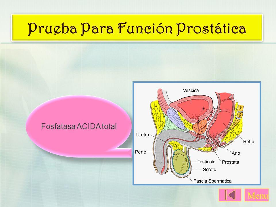 Prueba Para Función Prostática Fosfatasa ACIDA total Menu