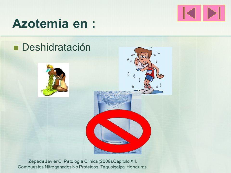 Azotemia en : Deshidratación Zepeda Javier C. Patologia Clinica (2008).Capitulo XII. Compuestos Nitrogenados No Proteicos. Tegucigalpa. Honduras.