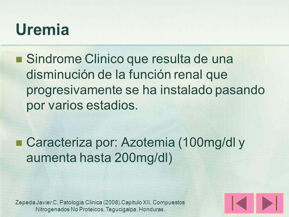 Uremia Sindrome Clinico que resulta de una disminución de la función renal que progresivamente se ha instalado pasando por varios estadios. Caracteriz
