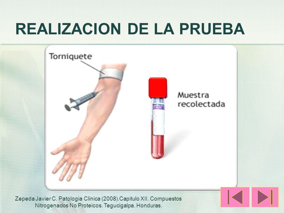 REALIZACION DE LA PRUEBA Zepeda Javier C. Patologia Clinica (2008).Capitulo XII. Compuestos Nitrogenados No Proteicos. Tegucigalpa. Honduras.