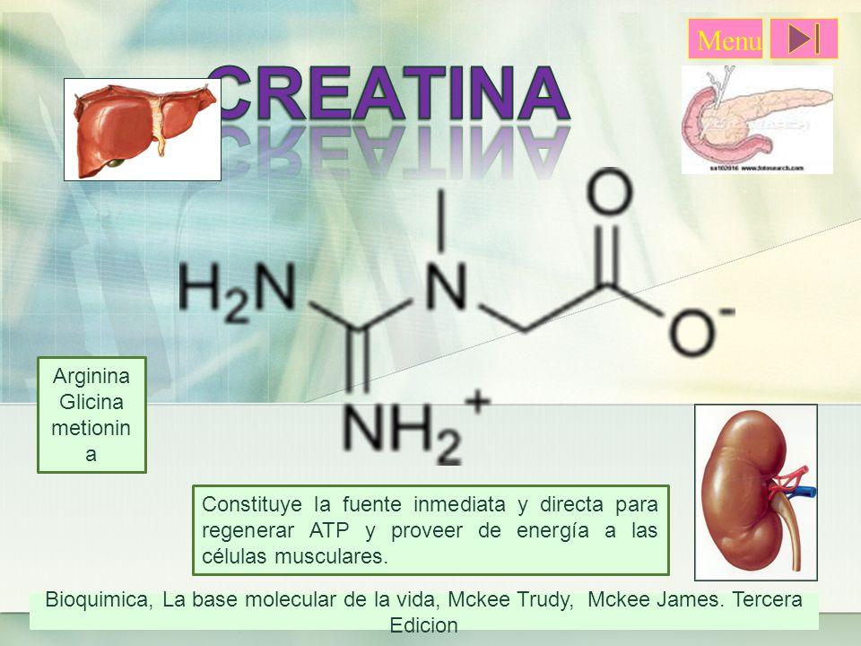 Arginina Glicina metionin a Constituye la fuente inmediata y directa para regenerar ATP y proveer de energía a las células musculares. Bioquimica, La