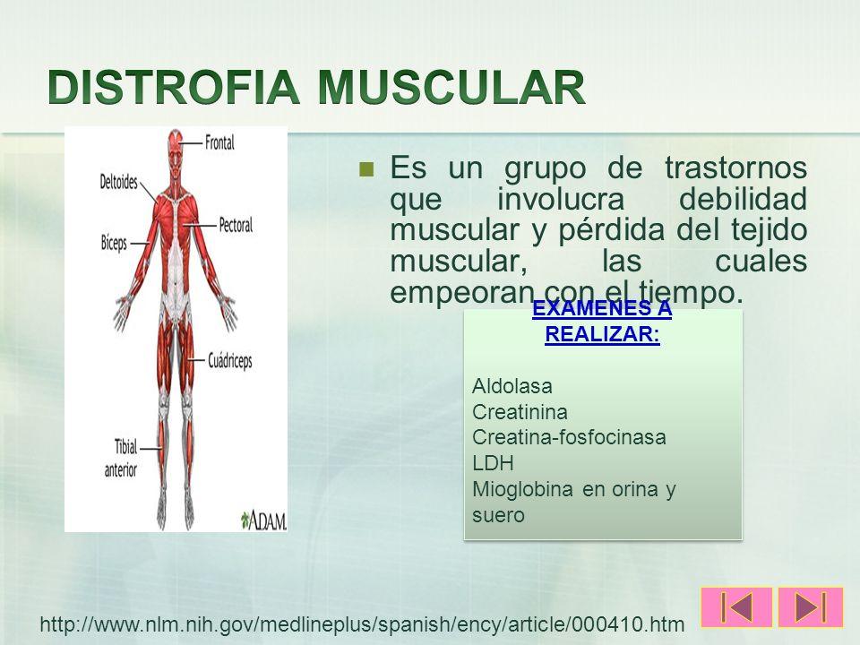 Es un grupo de trastornos que involucra debilidad muscular y pérdida del tejido muscular, las cuales empeoran con el tiempo. EXAMENES A REALIZAR: Aldo