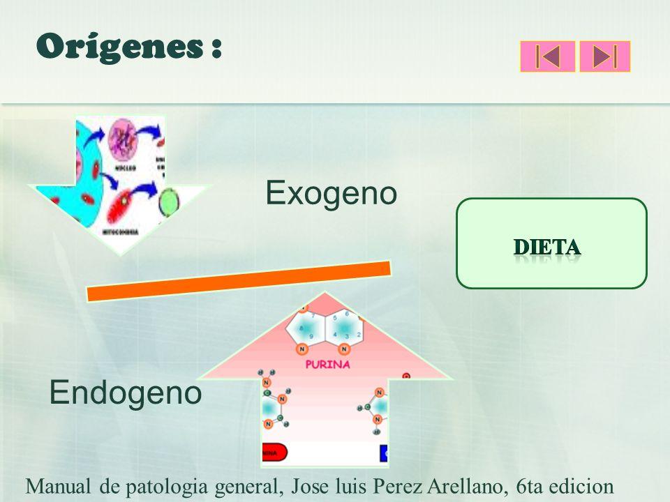Orígenes : Exogeno Endogeno Manual de patologia general, Jose luis Perez Arellano, 6ta edicion