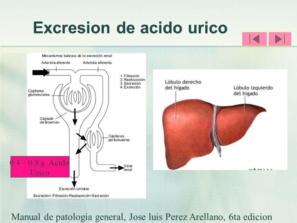 Excresion de acido urico Manual de patologia general, Jose luis Perez Arellano, 6ta edicion 0.4 – 0.8 g Acido Urico