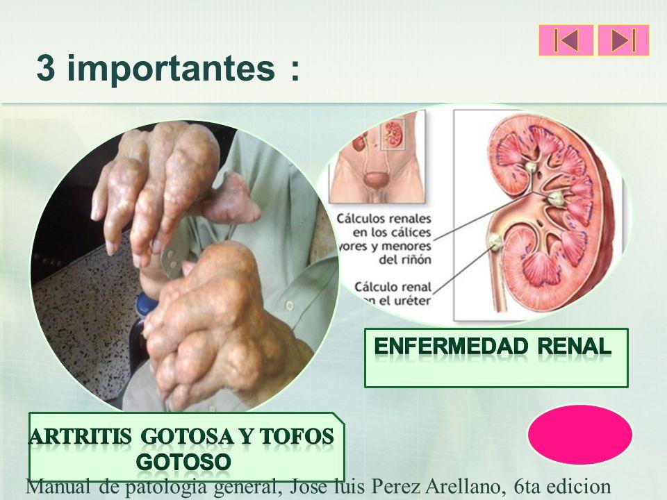 3 importantes : Manual de patologia general, Jose luis Perez Arellano, 6ta edicion