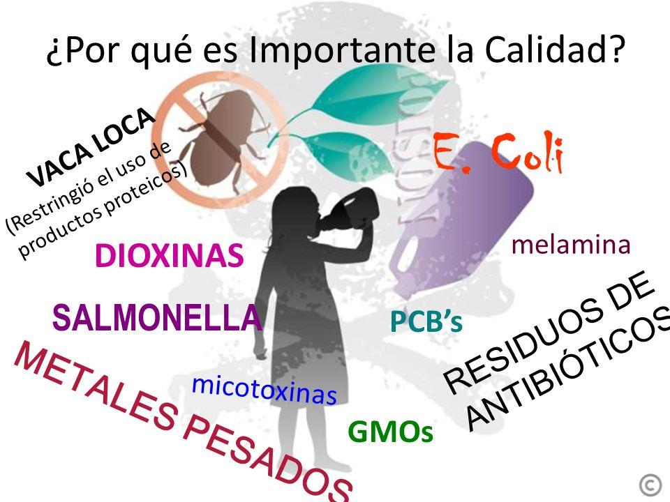 VACA LOCA METALES PESADOS DIOXINAS E. Coli SALMONELLA RESIDUOS DE ANTIBIÓTICOS (Restringió el uso de productos proteicos) GMOs micotoxinas PCBs melami