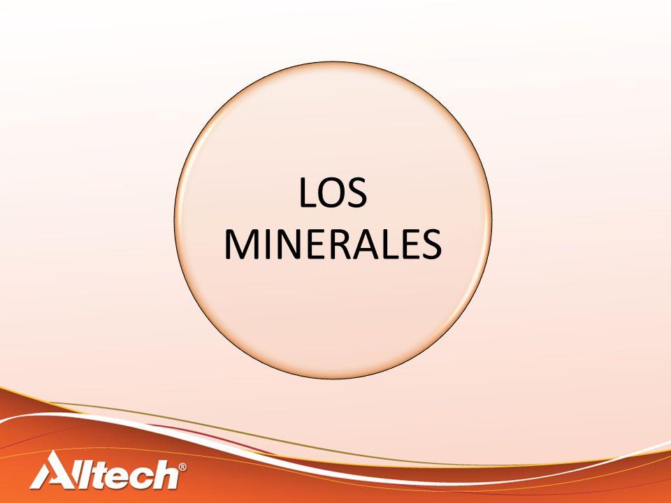 Nutrientes que influyen en la absorción de los microminerales NutrientesFeCuMnZn Aminoácidos Fibras Ac.