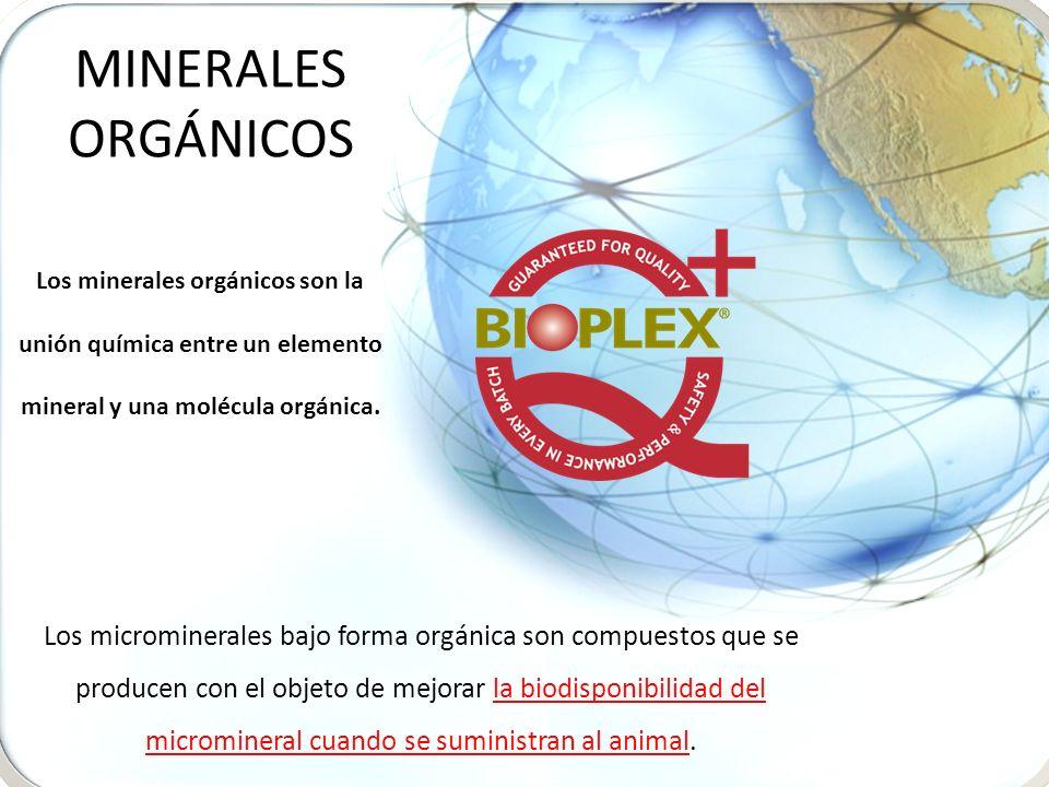 Los minerales orgánicos son la unión química entre un elemento mineral y una molécula orgánica. Los microminerales bajo forma orgánica son compuestos