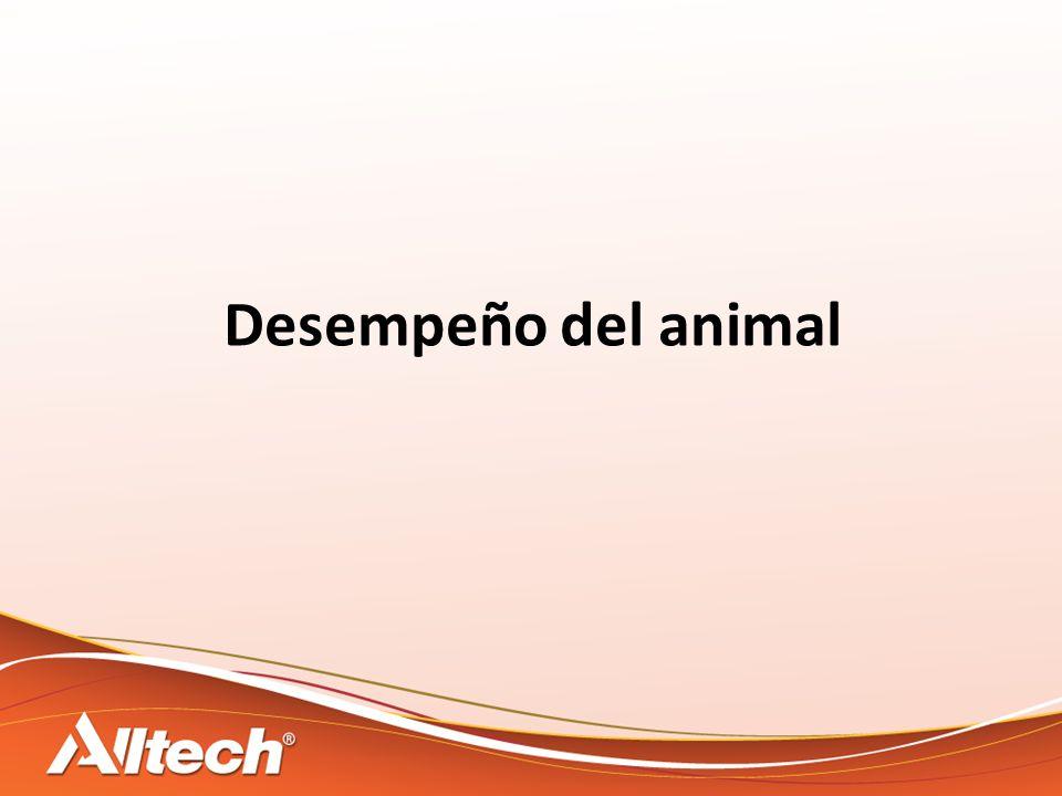 Desempeño del animal