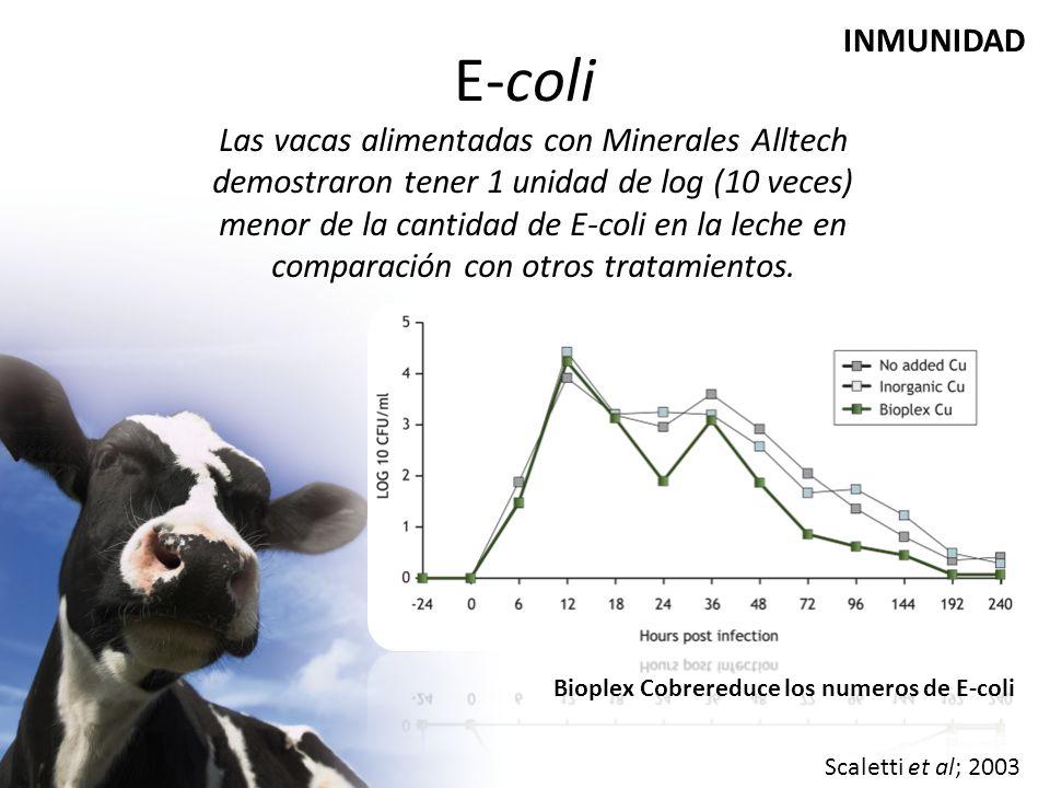 E-coli Las vacas alimentadas con Minerales Alltech demostraron tener 1 unidad de log (10 veces) menor de la cantidad de E-coli en la leche en comparación con otros tratamientos.