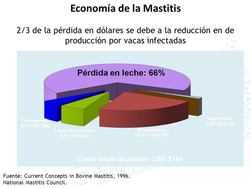 Economía de la Mastitis 2/3 de la pérdida en dólares se debe a la reducción en de producción por vacas infectadas Fuente: Current Concepts in Bovine Mastitis, 1996.
