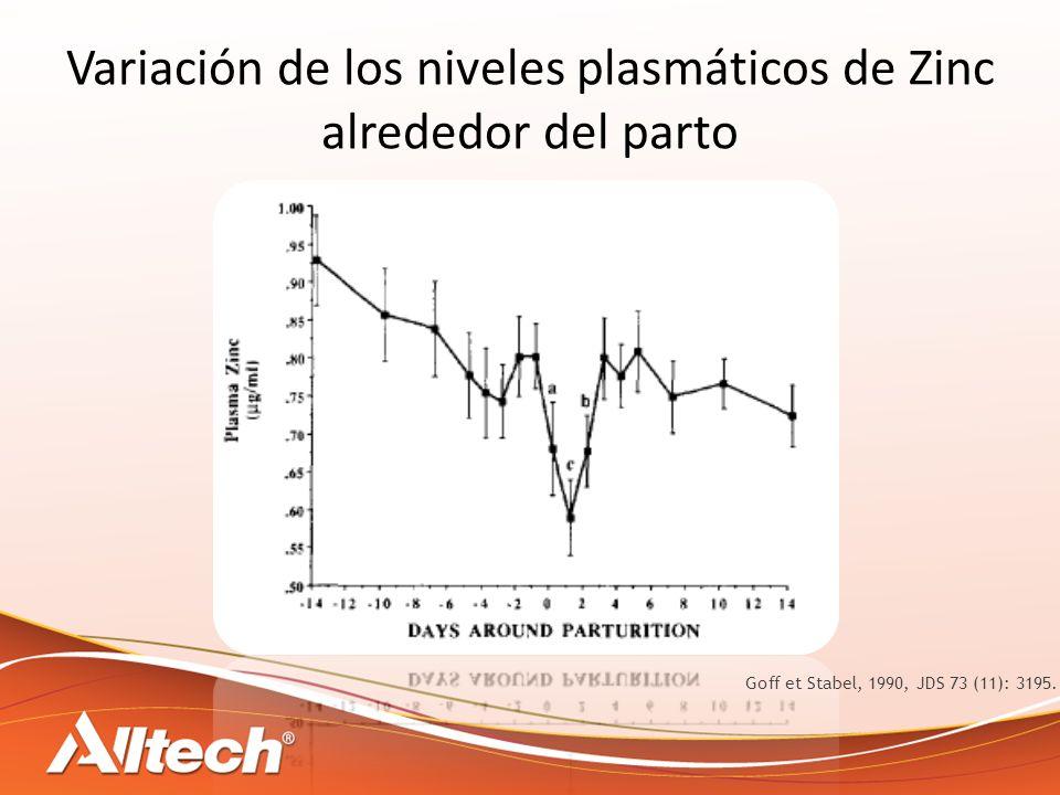 Variación de los niveles plasmáticos de Zinc alrededor del parto Goff et Stabel, 1990, JDS 73 (11): 3195.