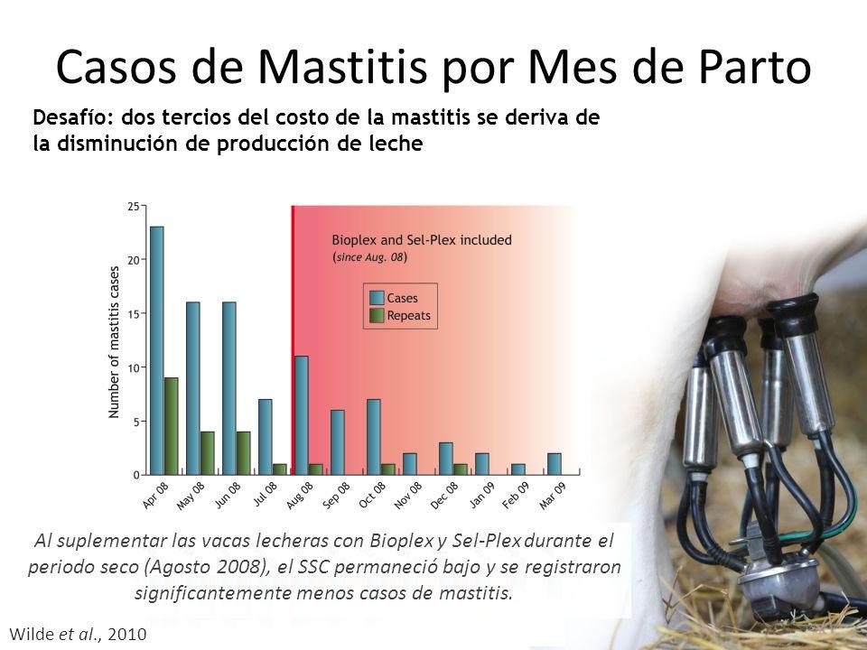 Casos de Mastitis por Mes de Parto Al suplementar las vacas lecheras con Bioplex y Sel-Plex durante el periodo seco (Agosto 2008), el SSC permaneció bajo y se registraron significantemente menos casos de mastitis.
