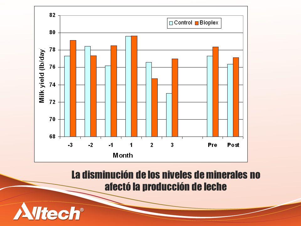 La disminución de los niveles de minerales no afectó la producción de leche