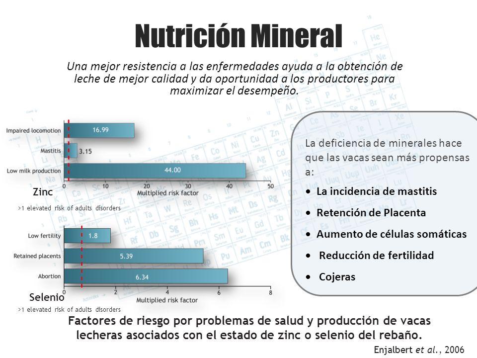 Nutrición Mineral Una mejor resistencia a las enfermedades ayuda a la obtención de leche de mejor calidad y da oportunidad a los productores para maxi