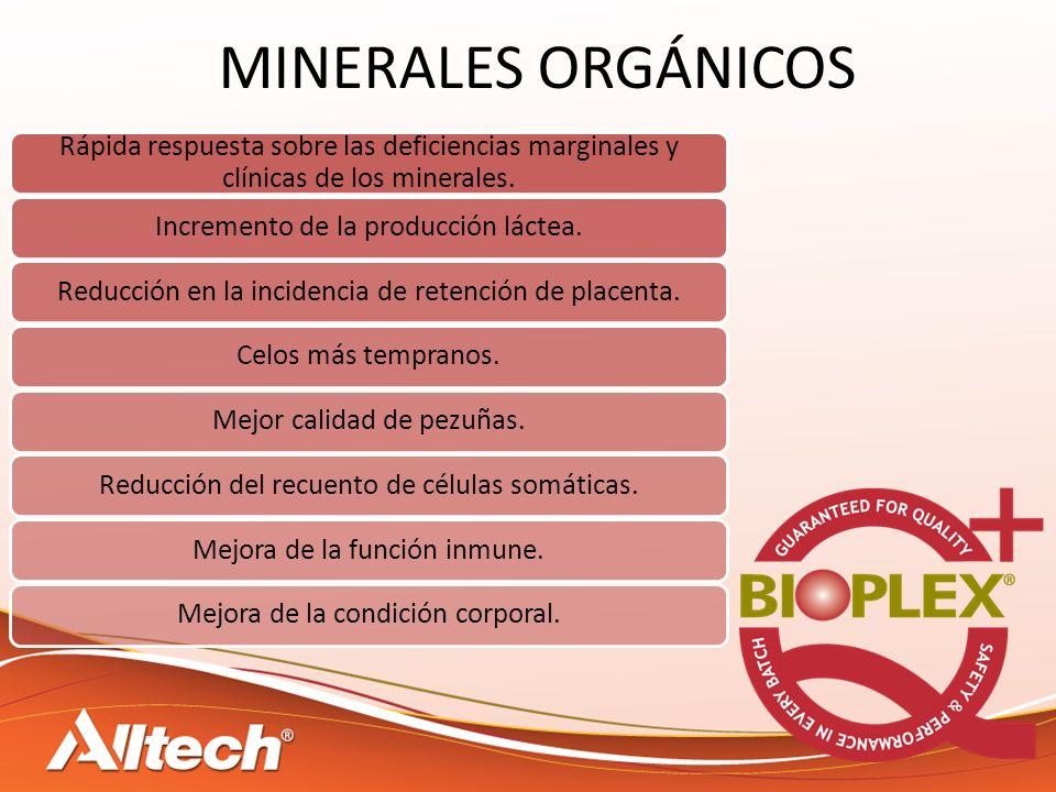 MINERALES ORGÁNICOS Rápida respuesta sobre las deficiencias marginales y clínicas de los minerales. Incremento de la producción láctea.Reducción en la
