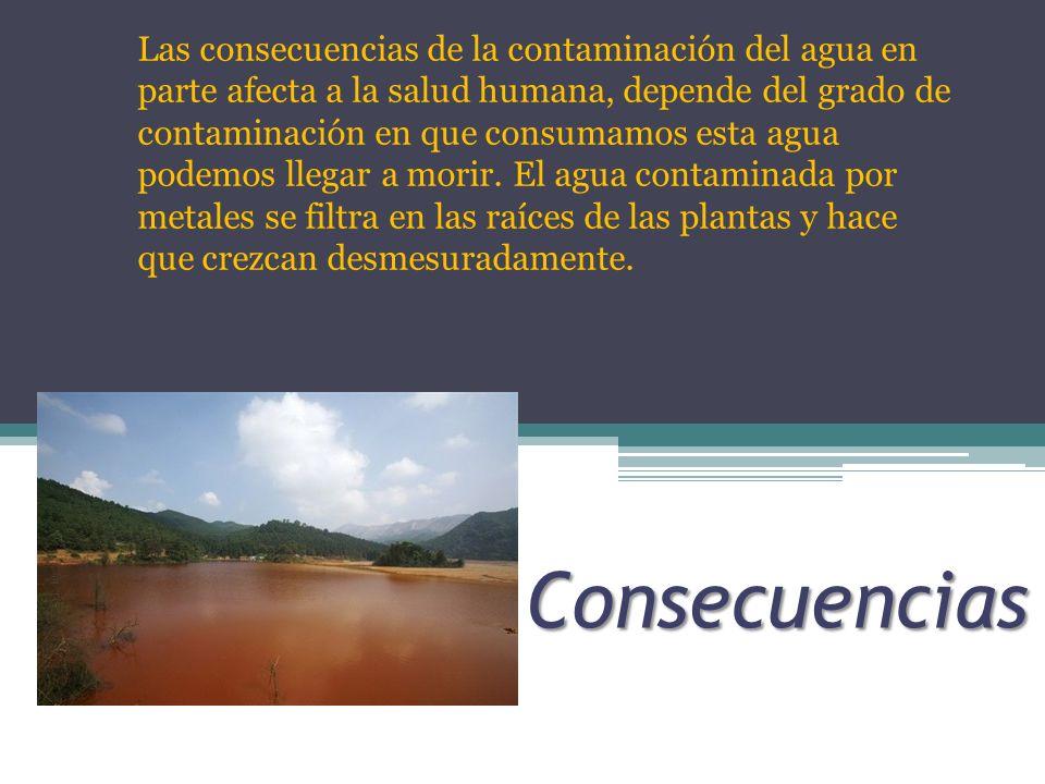 Consecuencias Las consecuencias de la contaminación del agua en parte afecta a la salud humana, depende del grado de contaminación en que consumamos e