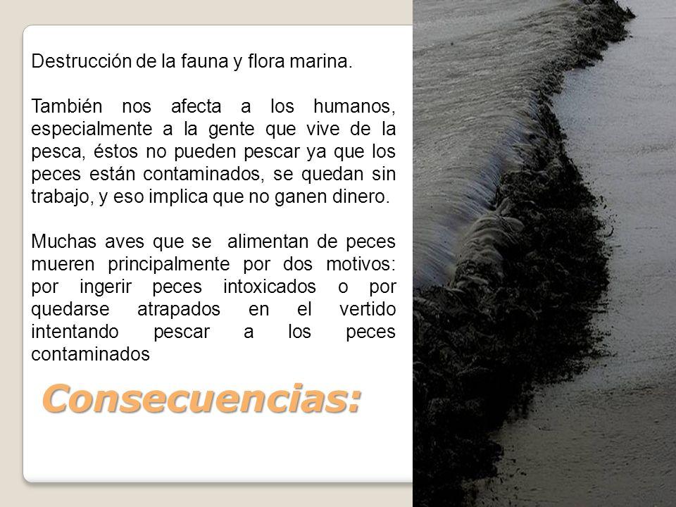 Consecuencias: Destrucción de la fauna y flora marina. También nos afecta a los humanos, especialmente a la gente que vive de la pesca, éstos no puede