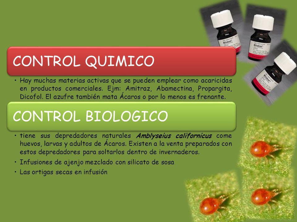 CONTROL QUIMICO Hay muchas materias activas que se pueden emplear como acaricidas en productos comerciales.