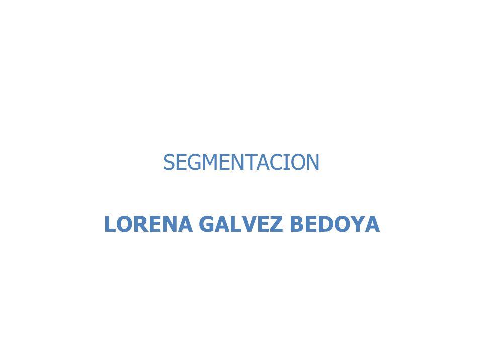 SEGMENTACION LORENA GALVEZ BEDOYA