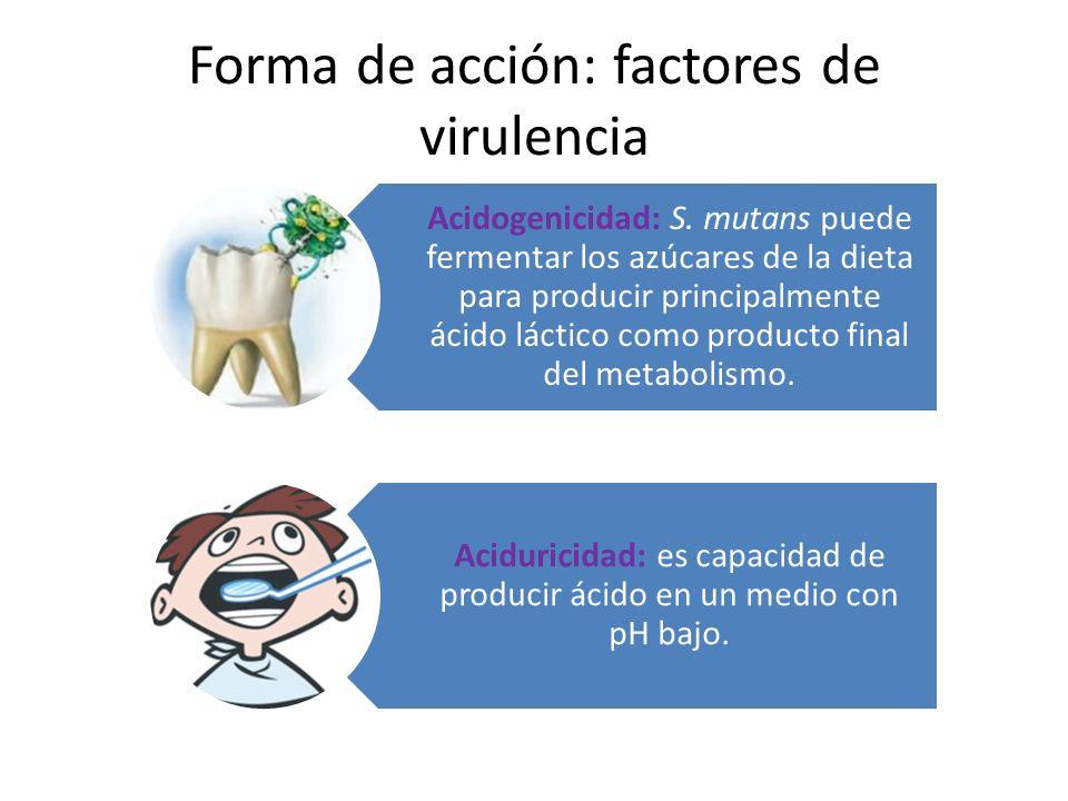 factores de virulencia Acidofilicidad: S.