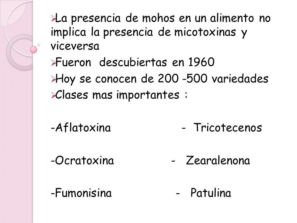 La presencia de mohos en un alimento no implica la presencia de micotoxinas y viceversa Fueron descubiertas en 1960 Hoy se conocen de 200 -500 varieda
