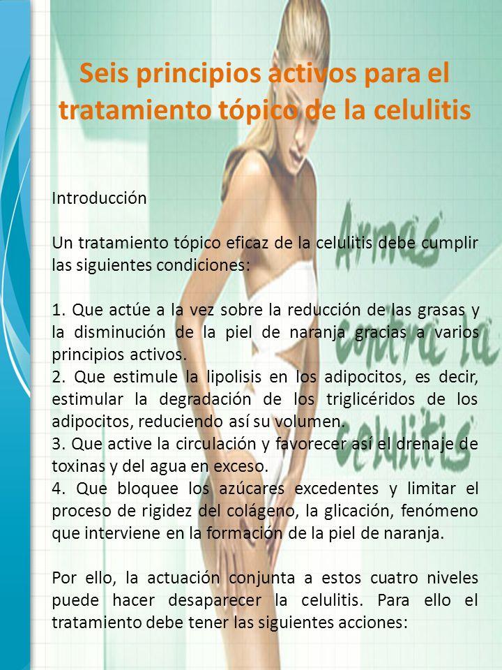 Seis principios activos para el tratamiento tópico de la celulitis Introducción Un tratamiento tópico eficaz de la celulitis debe cumplir las siguient