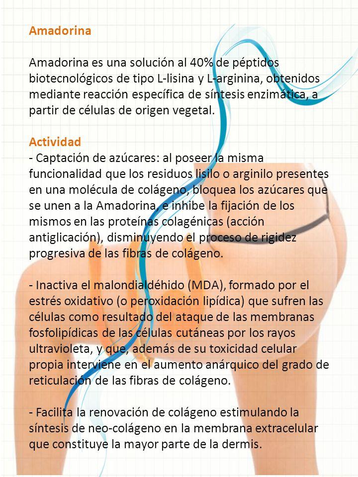 Amadorina Amadorina es una solución al 40% de péptidos biotecnológicos de tipo L-lisina y L-arginina, obtenidos mediante reacción específica de síntes