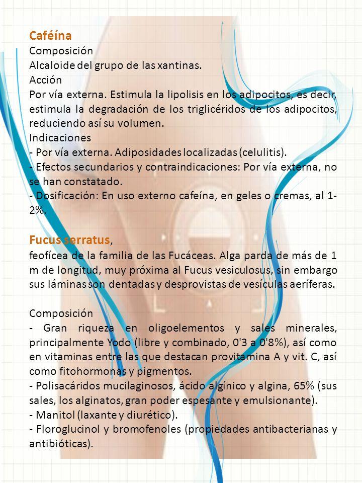 Caféína Composición Alcaloide del grupo de las xantinas. Acción Por vía externa. Estimula la lipolisis en los adipocitos, es decir, estimula la degrad