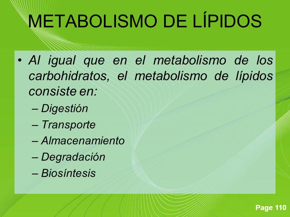 Page 110 Al igual que en el metabolismo de los carbohidratos, el metabolismo de lípidos consiste en: –Digestión –Transporte –Almacenamiento –Degradaci