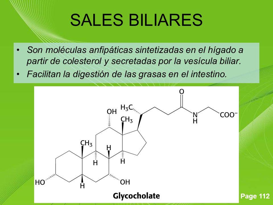 Page 112 Son moléculas anfipáticas sintetizadas en el hígado a partir de colesterol y secretadas por la vesícula biliar. Facilitan la digestión de las