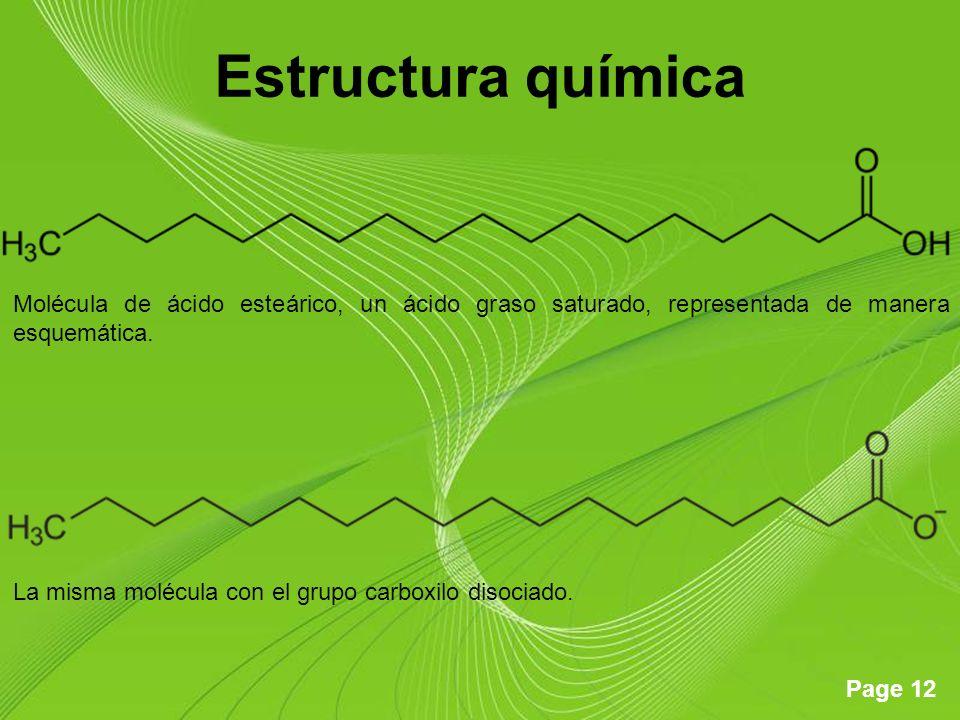 Page 12 Estructura química Molécula de ácido esteárico, un ácido graso saturado, representada de manera esquemática. La misma molécula con el grupo ca