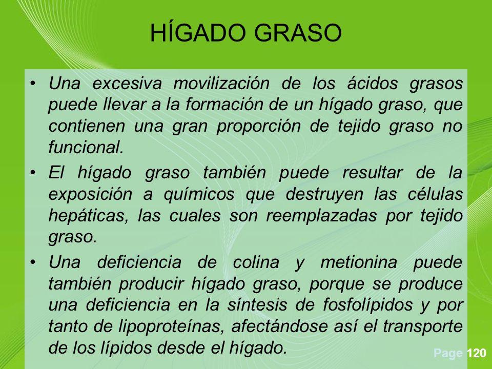 Page 120 Una excesiva movilización de los ácidos grasos puede llevar a la formación de un hígado graso, que contienen una gran proporción de tejido graso no funcional.