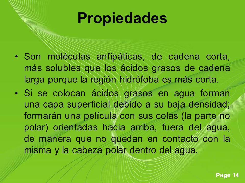 Page 14 Propiedades Son moléculas anfipáticas, de cadena corta, más solubles que los ácidos grasos de cadena larga porque la región hidrófoba es más corta.