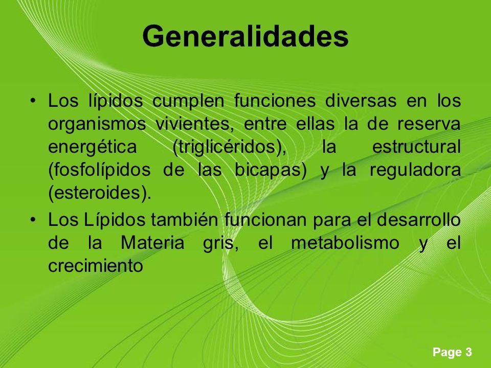 Page 3 Generalidades Los lípidos cumplen funciones diversas en los organismos vivientes, entre ellas la de reserva energética (triglicéridos), la estructural (fosfolípidos de las bicapas) y la reguladora (esteroides).