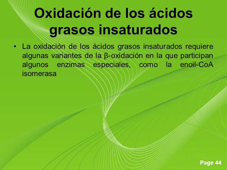 Page 44 Oxidación de los ácidos grasos insaturados La oxidación de los ácidos grasos insaturados requiere algunas variantes de la β-oxidación en la que participan algunos enzimas especiales, como la enoil-CoA isomerasa
