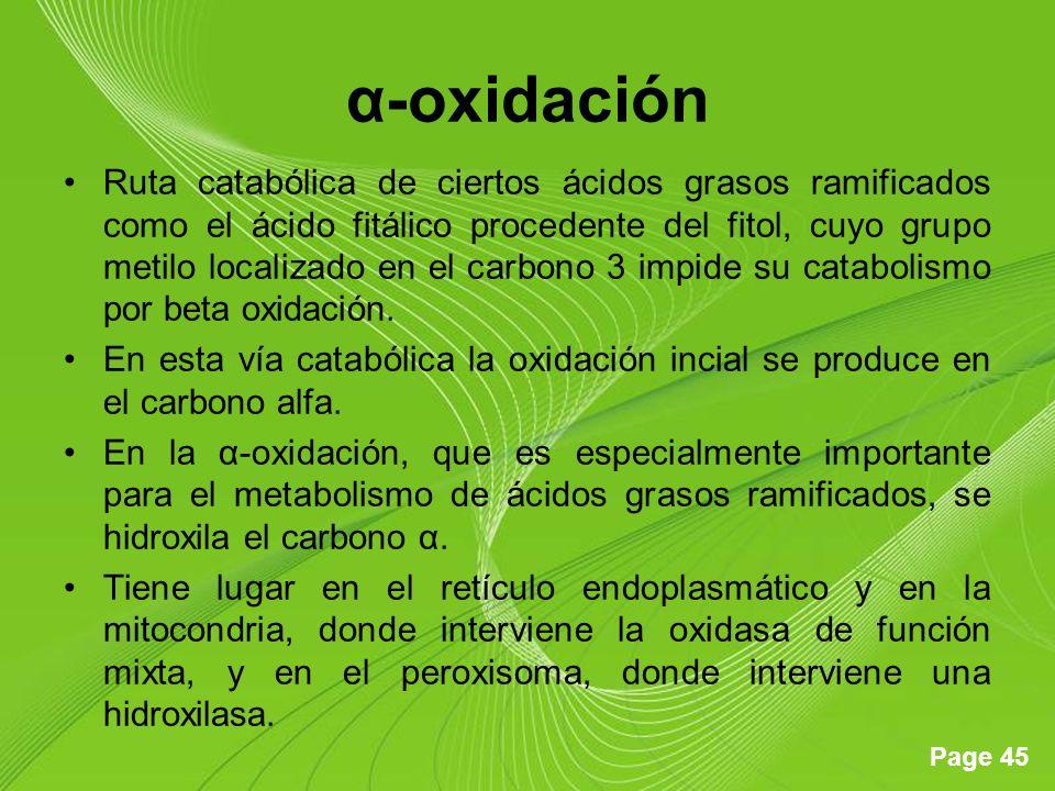 Page 45 α-oxidación Ruta catabólica de ciertos ácidos grasos ramificados como el ácido fitálico procedente del fitol, cuyo grupo metilo localizado en el carbono 3 impide su catabolismo por beta oxidación.